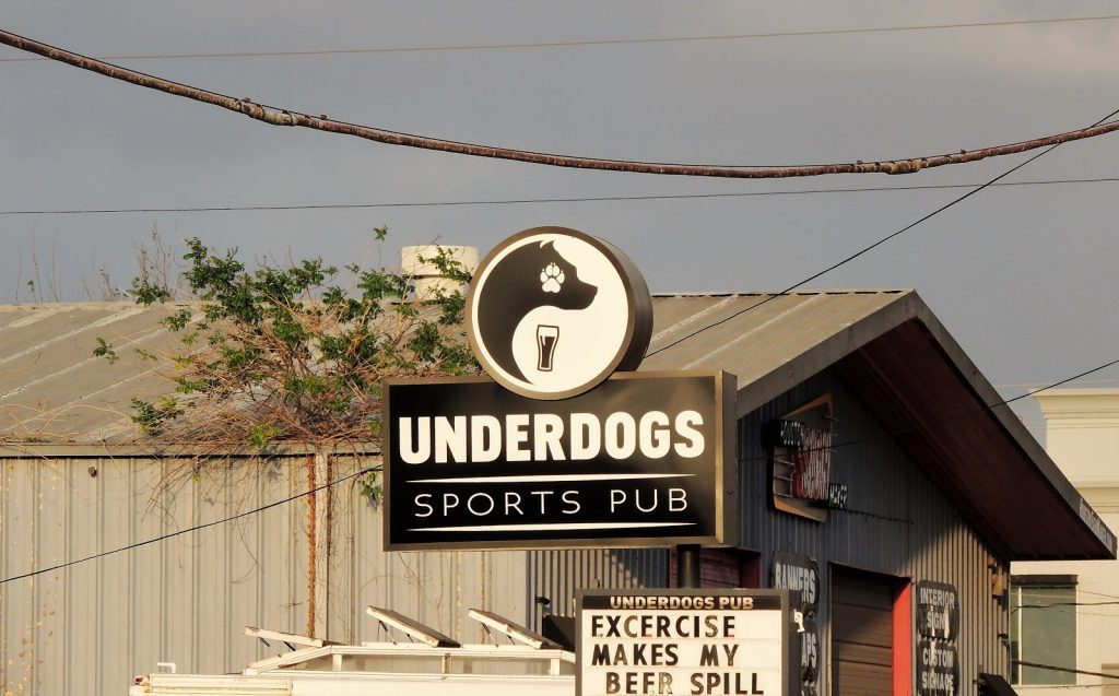 dog friendly bars houston
