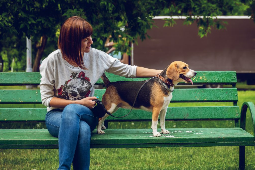 deal with separation anxiety in dogs