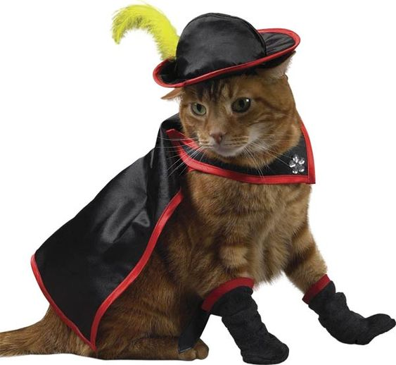 puss in boots halloween costume for cats