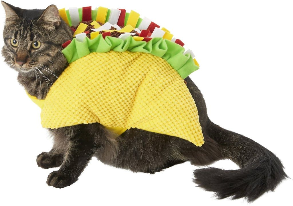 cute cat halloween costumes