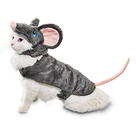 pet cat halloween costume