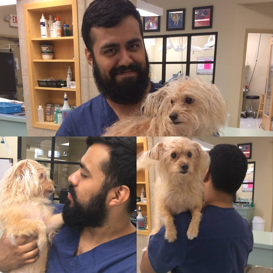 Crossroads Animal Clinic Houston - Staff Picture Gallery
